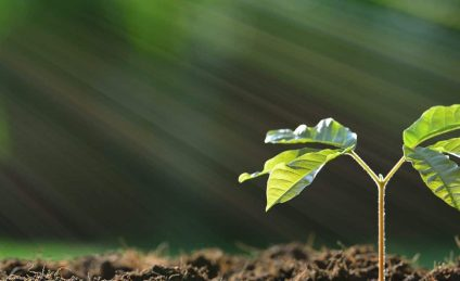 sustainability-mission